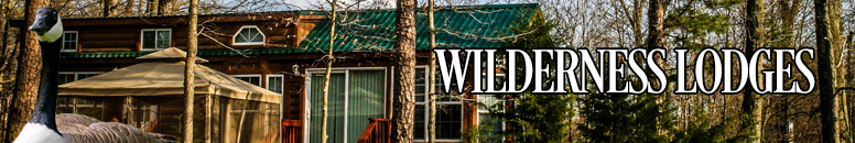 Reserve a Wilderness Cabin