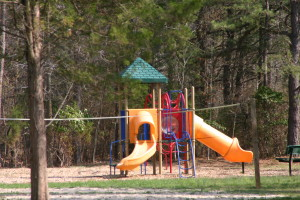 Playground, Volleyball, Community Fire Pit are just some of the amenities you'll find at Crystal Springs